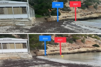 Image Posidonia has prevented sand loss on beaches